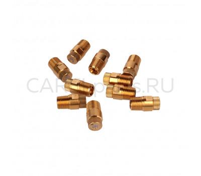 CAREL ECKN0401D0 Форсунка CAREL для EC Optimist 5 кг/ч